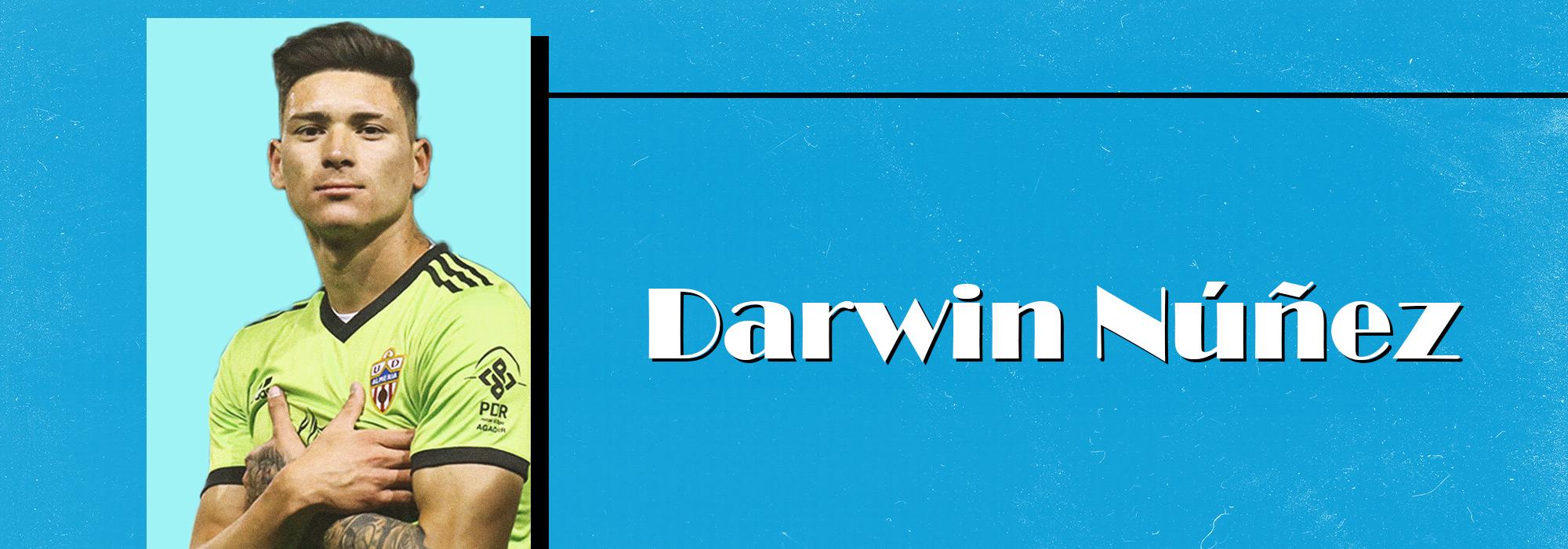 Darwin Nunez Analyse
