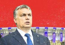 Ungarn Fußball